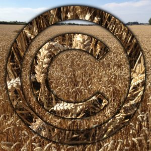 Reasons To Cultivate IP In The Agri-Tech Field