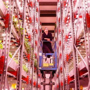 Bringing The Outside In – Innovating for Controlled Environment Agriculture