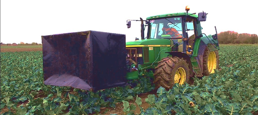 Using 3D imaging to harvest broccoli