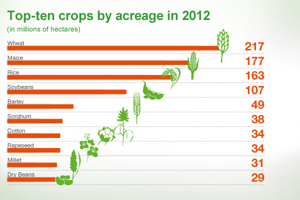 Top 10 crops by acreage in 2012
